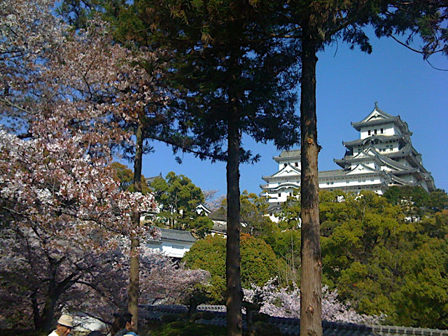 Himeji Castle with Sakura and Trees