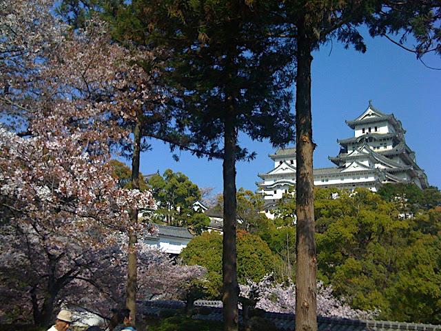 Himeji Castle with Sakura and Trees
