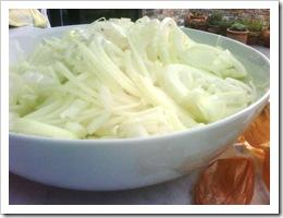 02 - Chopped onions