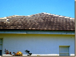 Tampa Non Pressure Roof Cleaning 022