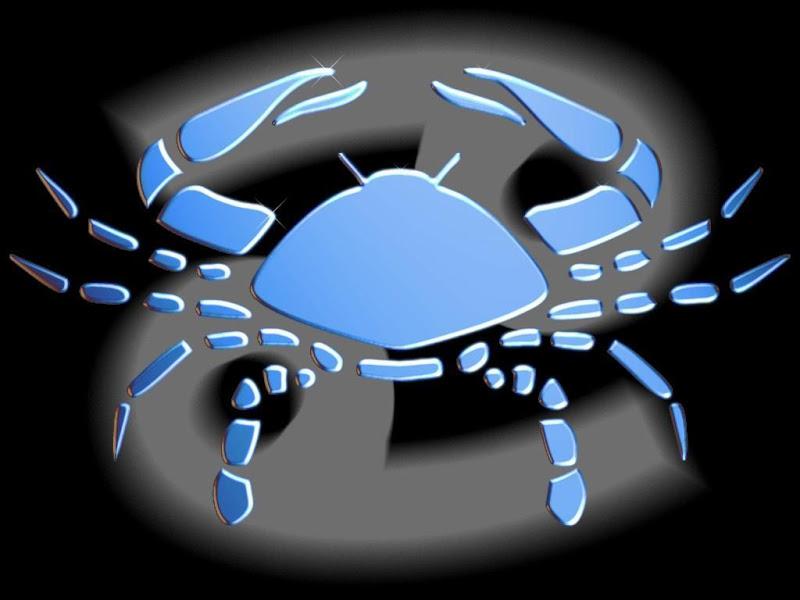 https://i0.wp.com/lh4.ggpht.com/_M1W1KX5bHIs/S0f3Hg8KsgI/AAAAAAAAA4M/g2KSyrChxzw/s800/signos_cancer_0800wallpapers.blogspot.com.jpg