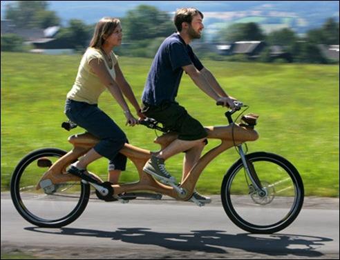 Unique Wooden Bicycle 02
