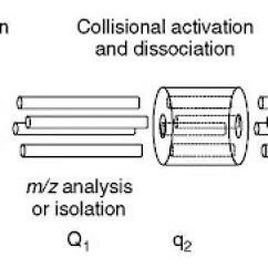 Schematic Diagram Of Mass Spectrometer Ford Steering Parts Techniques For Ion Dissociation Fragmentation And Scanning In Ms A Triple Quadrupole