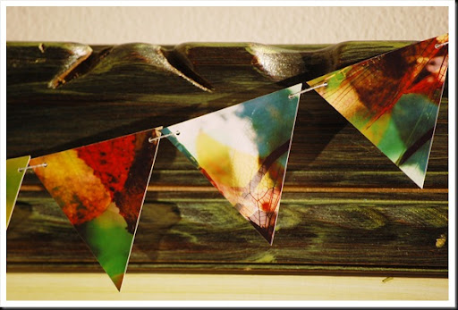 BUNTING Dragonfly Autumn 3