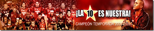 campeon20082009