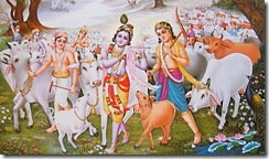 Krishna and Balarama tending to cows
