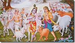 Krishna Balarama and friends
