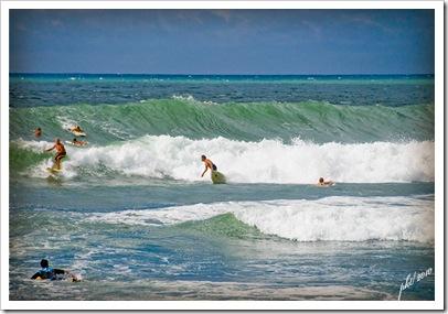 DSC_0247surfing
