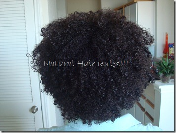 Wash n Go Natural Hair Rules.com