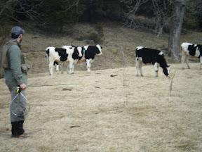 DSCF0511-2011-02-7-19-36.JPG