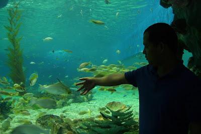 manila ocean park, manila