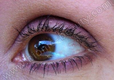 Purple eye shadow look using Purely Cosmetics