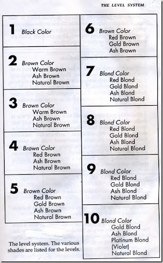 Level system chart also the  clevel   in hair color   simple to understand universal rh killerstrandsspot