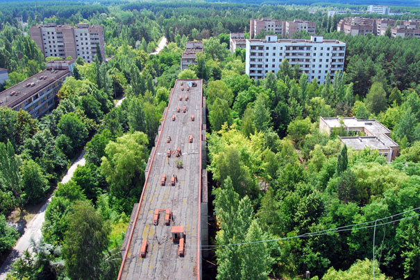 Abandoned city. Forest have grown since the evacuation