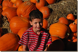 ED in pumpkins