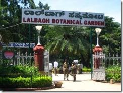 botanical-garden-bangalore-india S