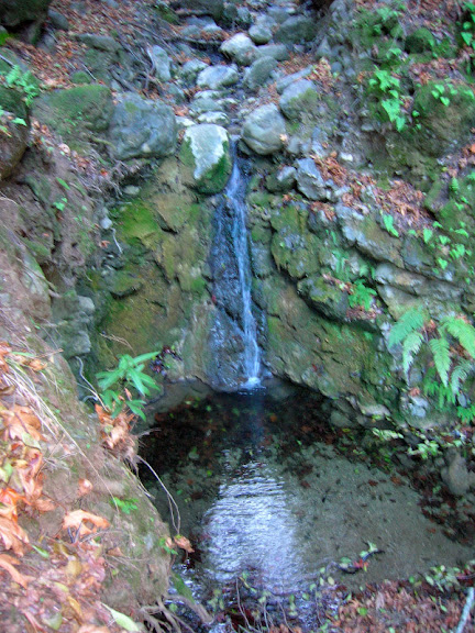 Small waterfall in upper Los Trancos Creek