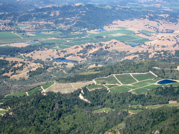 View down to the vineyards!