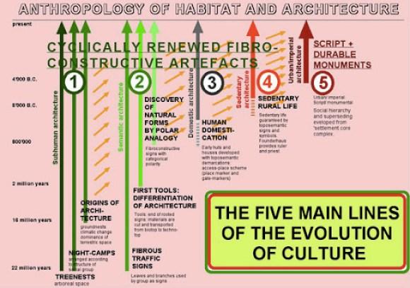 archAnthropology.1Q6fH1kU8rF9.jpg