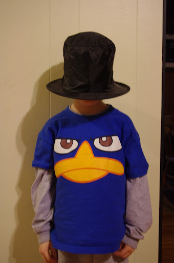 Perry the Platypus wears a hat.
