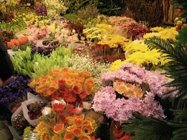 Inside the Flower Market