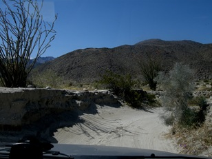 Coyote Canyon (13)