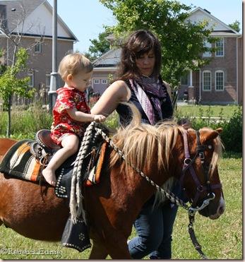 s and s pony