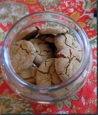 ginger cookies truffles 041