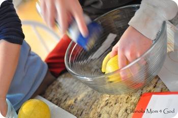 preserving lemons 005