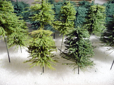 Close-up dennenbomen