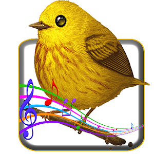 download Bird Sounds apk