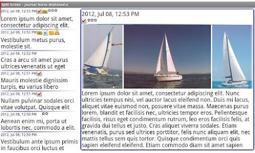 Journal Notes Multimedia screenshot 1