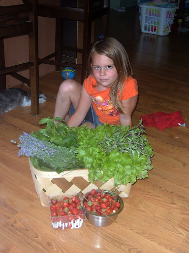 lavender, herbs, leafy greens, and strawberries with my garden helper