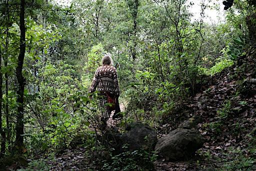 Ambar Walking In Woods