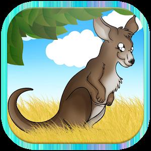 Baby kangaroo run