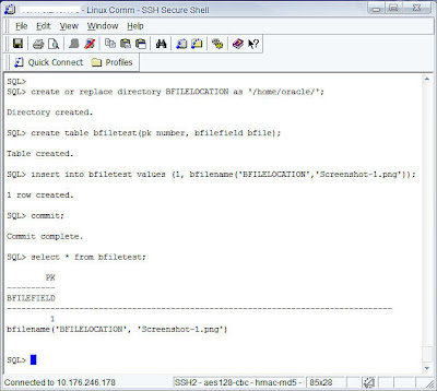 Oracle 11g – BLOB and BFile support for SQL Plus « Business