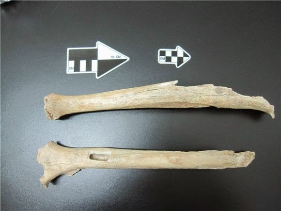 The leg of the early modern human from Tianyuan Cave was used for the genetic analysis as well as for carbon dating.