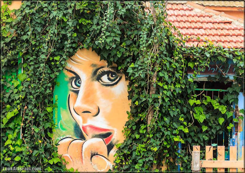 Граффити Тель Авива / Красота