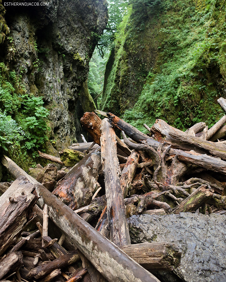 The Oneonta Falls Hike | Oregon Waterfall Hikes.