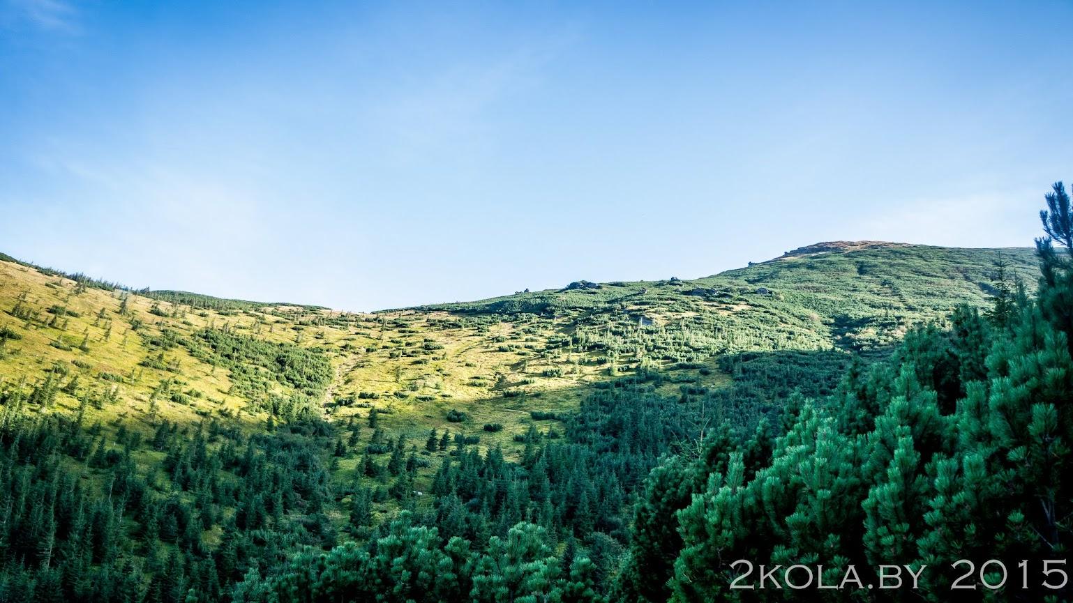 поход в карпаты по черногорскому хребту