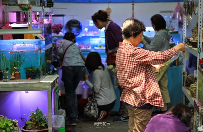 台南中西區景點,南門花市-4