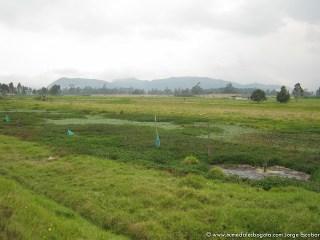 Valle aluvial del Río Bogotá (Bosa)