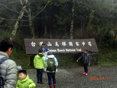 太平山之旅-台灣山毛櫸國家步道下