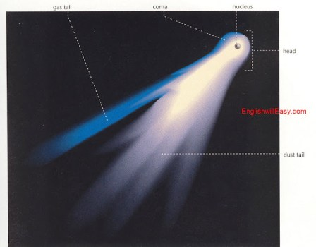 Comet   Nucleus, coma, gas tail, head, dust tail