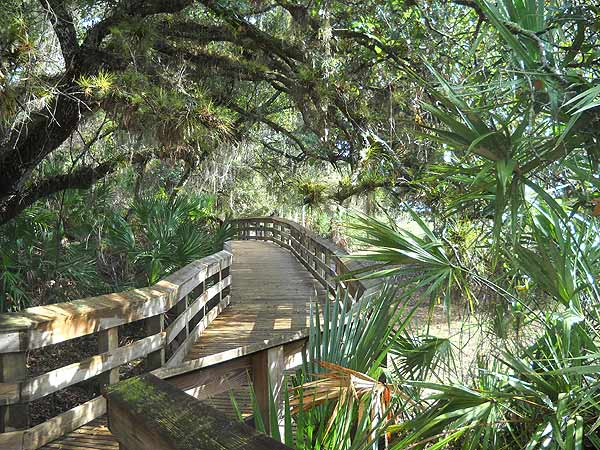 talkin tourism florida swamps and the top 10 beaches of