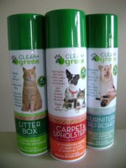 clean green pet stain and odor