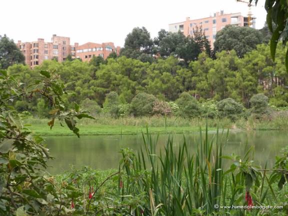 Humedal de Córdoba