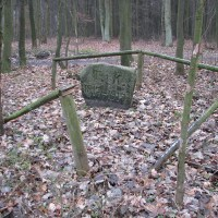 Kamień z Łysomic