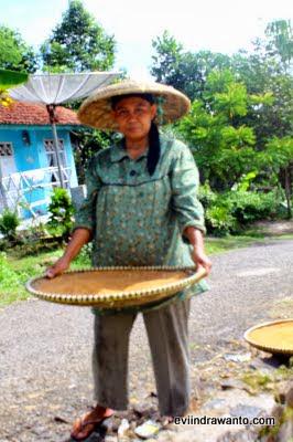 wanita dalam industri gula semut
