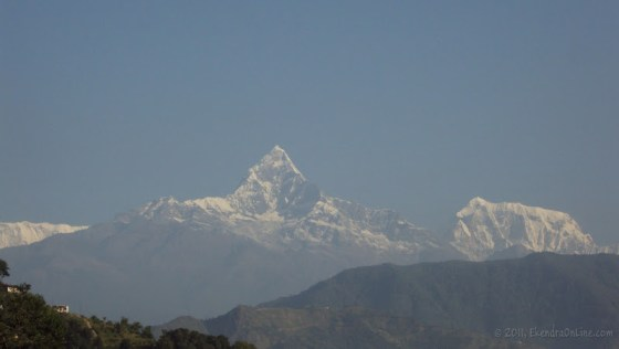 Pride held high as the Himalayas -2